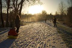 Winter in Waterwinpark Zeist (leunkstar) Tags: park schnee winter snow landscape utrecht open 28mm sneeuw wide tracks 28 winterland zeist landschap sledge slee waterwingebied landscap sunglare d90 lensglare nikon28mm nikkor28mm nikond90 28mmaf nikon28mmaf waterwinpark 28mmaa