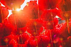 Lanterns (Picocoon) Tags: new red paper year chinese lantern lunar