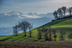 Hills and Mountains (emanuelezallocco) Tags: winter sky italy snow mountains tree green alberi montagne relax landscape blu hills cielo neve sole inverno bianco marche colline peack marchigiane