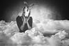"""""""Wir alle tragen Masken, man sieht sie nur nicht"""" (Martin.Matyas) Tags: white rabbit texture face lampe gesicht mit himmel wolken nadine frau dame weiss hande schwarz hase tier hasenohren mensch masken meister maskerade kleid textur maedchen entsetzt hasenkopf verzaubert hasengesicht"""