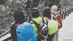 IMG_20160124_123707 (Frankie Tseng ()) Tags: trees panorama cliff sun mountain snow mountains sports sport race forest river photography 50mm climb waterfall nikon meetup outdoor hiking flash taiwan trails sunny running run hike cliffs bamboo tokina climbing trail waterfalls rivers mtn runners nikkor firstsnow 70300mm runner tamron 90mm f8 1224mm  f28 f4 tw 1870mm yangmingshan sportsphotography trailrunning outdoorsports nightrunning santiaoling sb900 yongnuo yn568