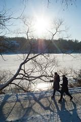 Djurgrdsbrunnsviken (gerikson) Tags: sun snow ice branches pedestrians contrejour cv40 cosinavoigtlnderultron40mmf2