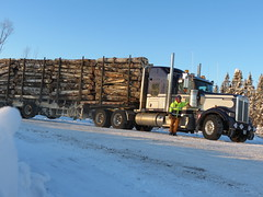 Sunrise in the Laver Lk rd. (jr-transport) Tags: road logging off logger custom heavy tough kenworth w900 w900l trailex