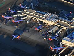 Terminal 1 at KLAX (Mark Harris photography) Tags: southwest aircraft aviation planes lax spotting