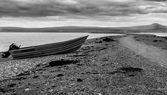 20150705-_MG_7177 (stephavre75) Tags: summer sky blackandwhite shells mountains nature water alaska landscape rocks afternoon outdoor sealife midday beachside