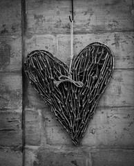 Happy Valentine's Day DSC_4706 (Katrina Wright) Tags: bw germany sticks heart bamberg nb stickheart