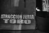 El torito (Matías Brëa) Tags: blancoynegro fiesta social letras atraccion