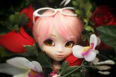 Romance ADAW 6/52 (AntiqueWolf) Tags: pink flowers winter red roses white 3 cute nature yellow hair toy toys photography glasses licht eyes kiss wolf doll purple natural sweet sewing adorable valentine lips melody artsy type faux valentines week pullip lovely fartsy lilys coolcat 2016 swen obitsu adorabe antinque adaw 2k16 handsswen