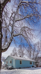 DSC01635-2 (johnjmurphyiii) Tags: winter usa snow yard connecticut shelly cromwell originaljpeg johnjmurphyiii 06416 sonycybershotdsch90