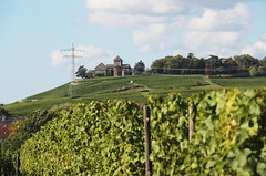 Schloss Johannisberg, Eltville 2015 (Spiegelneuronen) Tags: kloster eltville weinberge johannisberg
