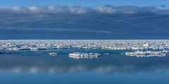 White on Blu (limebluphotography) Tags: light shadow sky reflection love ice water beauty clouds frozen hate placid raging