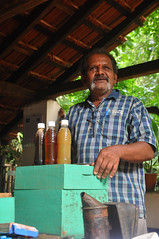 Mr. Vassan explains beekeeping (mansi-shah) Tags: rainforest farming coorg madikeri beekeeper forestecology mansishah rainforestretreat jenniferpierce ceptsummerschool