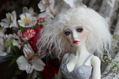 (twinkle_moon_bunny) Tags: doll bjd msd balljoint fafner souldoll