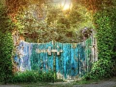 Secret Garden Way (clarkcg photography) Tags: hinge blue light green yellow garden evening gate secret gateway shrub passage secretgarden latch