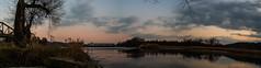 Die Aare kurz vor dem Zufluss in den Rhein - explored