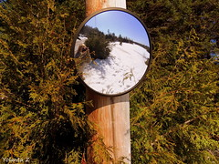 Looking back (Yolanta Z) Tags: stagathe
