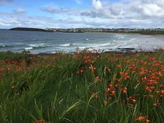 Looking back on Portrush (brookscl) Tags: ireland unitedkingdom northernireland portrush ccwday3map