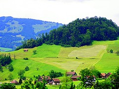 Magestic Switzerland Country (carolynthepilot) Tags: travel houses homes holiday mountains alps beautiful field barn landscape switzerland countryside europe paradise european farmers sweet swiss country zurich ngc scenic meadows roadtrip adventure alpine valley bbc postcards summit fields romantic chalet farms dairy passport treeline magical visa mts ch nationalgeographic dairyland lowcountry zh magestic carolynbistline bistline alpmuntains natioonalgeo