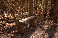 Waiting (Elmore Wolcott) Tags: park ny indian ladder escarpment thacher helderberg