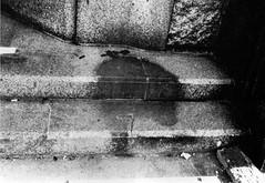 World War II  A human nuclear blast 'shadow' formed on bank steps after the explosion of the atom bomb in Hiroshima (1945) [1707 x 1178] #HistoryPorn #history #retro http://ift.tt/1VU8hEM (Histolines) Tags: world shadow history war explosion steps nuclear bank x retro hiroshima human ii timeline after bomb 1945 blast atom formed  1707 vinatage 1178 a historyporn histolines httpifttt1vu8hem