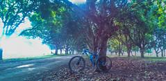 Granada (aljar3d) Tags: road trees sky mountain nature bike clouds climb cross earth country philippines off downhill mount trail dh biking granada mtb xc bacolod ph quarry hardtail mandalagan alangilan