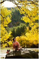 DSC_4542b (minsu101) Tags: autumn light newzealand portrait look leaves silhouette yellow rock backlight gold golden nikon nz southisland natalie f28 arrowtown 2470mm d610