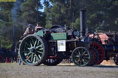 TE_AveilingPorter_7304a_McLeansIsland_09April2016 (nzsteam) Tags: price train island traction engine railway scene steam engines locomotive boiler boilers mcleans sawmilling
