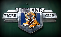 Photo of Leyland Tiger Cub