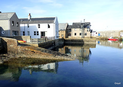 A Little Corner Of Stromness Harbour (orquil) Tags: old uk greatbritain houses sea sunshine corner reflections islands scotland boat town seaside spring nice orkney pretty waterfront little harbour piers shed shoreline sunny scene calm april slip mirrorimage launch quaint picturesque stromness southpier orcades marinestudiesdepartment