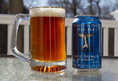 Whale's Tale (brucetopher) Tags: light sun beer sunshine backlight table spring afternoon drink warmth craft cocktail nantucket backlit craftbeer ciscobrewers whalestailpaleale