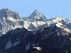 Jura, Cervin (Matterhorn) vu du Mont Tendre - 25.01.16 (Odile Dufour) Tags: alpes jura matterhorn cervin monttendre