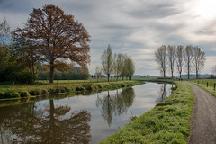 (Kim van Dijk photography) Tags: reflection tree nature river de landscape spring flora mark breda hdr rivier