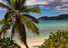 Room with a View (Tim Fitzwater) Tags: tropicalisland caribbean tortola tropics bvi britishvirginislands longbay caribbeansea longbaybeachclub