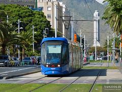 Santa Cruz de Tenerife (ES) (tram2000@gmx.de) Tags: santa tram des cruz tenerife streetcar teneriffa tramway spanien strassenbahn tramvaj tranvia tramwaj