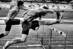 Dcathlon 4 (Ewick) Tags: sport race montpellier athltisme kevinmayer 110mhaies dcathlon