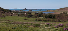 IMG_6344 (Chris Wood 1954) Tags: bryher islesofscilly