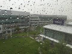 Rain (_punit) Tags: rain yahoo day rainy