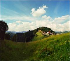 Flower field (Katarina 2353) Tags: summer film field landscape nikon europe serbia srbija zlatibor katarinastefanovic katarina2353