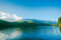landscape of Munnar lake ([s e l v i n]) Tags: india green nature natural tea kerala greenery munnar teaestate greenearth keralatourism keralatravel picturesofkerala selvin