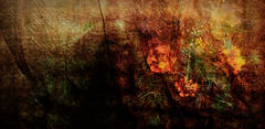 Tapestry of dreams (flowerweaver) Tags: flowers light orange green leaves yellow garden dark spring rust surreal dreamy ribbon impressionist tapestry hss jaquardfabric