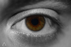 Eye (Circ Grand) Tags: boy blackandwhite brown man color macro green eye photoshop canon vintage noiretblanc body vert oeil yeux human corps someone marron personne couleur pupil partie homme somebody retouche humain pupille cils quelquun