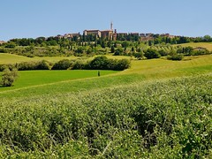 Approaching Pienza (Susan Roehl) Tags: countryside unescoworldheritagesite tuscany pienza pienzaprovince italyjune2014
