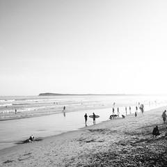 Ocean Grove (Paul Ebbo) Tags: ocean summer blackandwhite bw sun beach australia victoria oceangrove