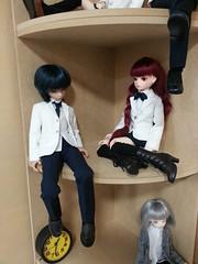 Doll Corner Shelf Display (almyki) Tags: white set ball kyle asian doll dolls display jasmine 14 mini shelf fairy tiny yours bjd ever bf abjd joint msd tf bluefairy