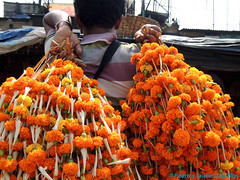 02 CALCUTA 24-calcuta-mercado-de-las-flores-4 (viajefilos) Tags: india pedro jaume calcuta viajefilos