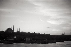Golden Horn (Uur AVCI) Tags: agfarodinal film:iso=100 developer:brand=agfa developer:name=agfarodinal film:brand=rollei rolleirpx100 film:name=rolleirpx100 filmdev:recipe=10578