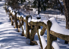 Just a fence in the snow... (sam.crowther) Tags: park nyc newyorkcity white snow newyork cold fence nikon centralpark blizzard snowday d5300