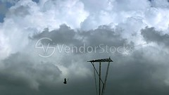 Storm clouds, time lapse (vndorstock) Tags: blue light sky cloud sunlight storm abstract motion film nature weather speed dark season grey freedom timelapse high dangerous heaven day shine loop background air hurricane overcast sunny rainy trailer float cinematic tornado pure cloudscape seamless badweather currents footage