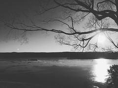 Hudson River (KaLiMaN BoKeH) Tags: bw newyork apple monochrome river hudsonriver lanscape iphone iphoneography iphone6s
