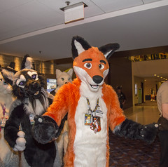 DSC_2971 (Acrufox) Tags: chicago illinois furry midwest december ohare rosemont convention hyatt regency 2014 fursuit furfest fursuiting acrufox mff2014